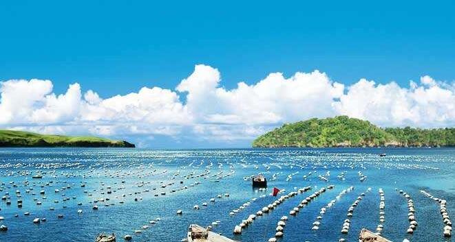百洋水产产业投资集团面经:怎么样看待离职又回归?