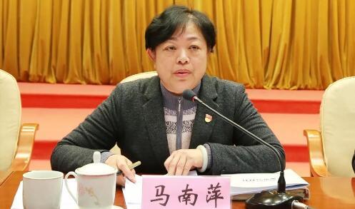 马南萍任北海市委常委、纪委书记,曾任河池市委常委、组织部长(马南萍简历图)
